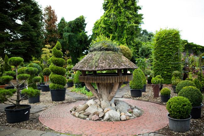 Baumschulen-Busch-Gartendekoration